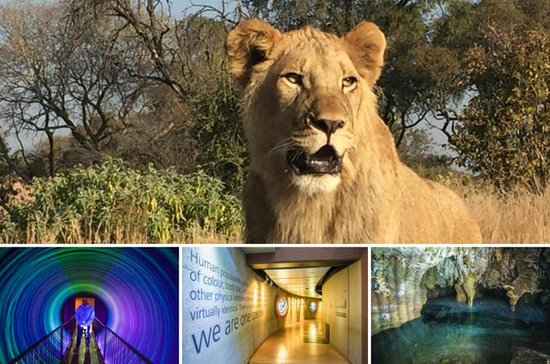 Lion Park, Maropeng and Sterkfontein...