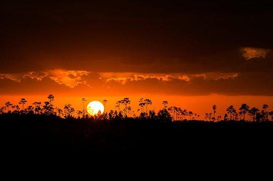Everglades Sunset Photography...