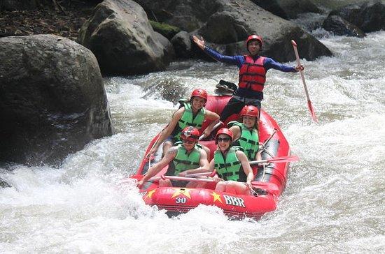 Full-Day Tour: White Water Rafting og...