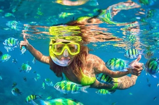 Private Tour: Blue Lagoon Snorkeling...
