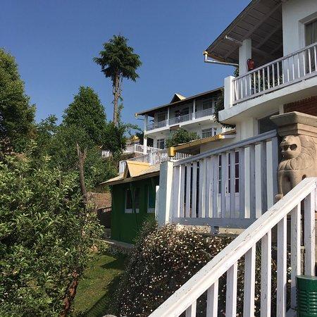 Te Aroha Dhanachuli : photo0.jpg