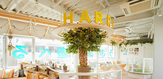 Harry Harajuku Terrace
