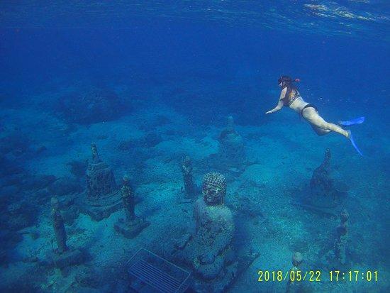 Supi Tour Nusa Penida: SNORKELING NUSA PENIDA ( www.supitournusapenida.com )