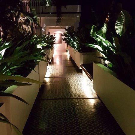 Bilde fra Viroth's Hotel