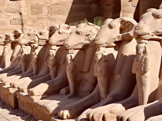Ναός Καρνάκ: ram headed sphinxes