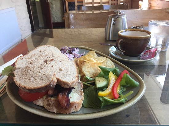 Tregaron, UK: Club sandwich. Just what a hungry cyclist needed.