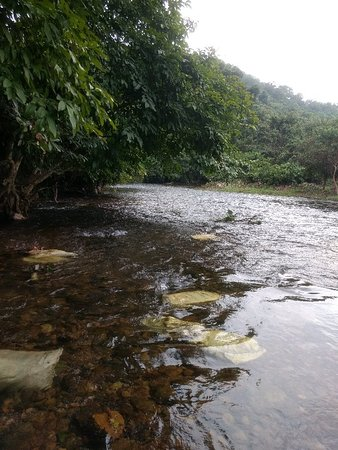 Konni Adavi Eco-Tourism