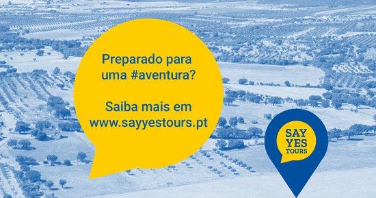 Redondo, البرتغال: Say Yes Tours [Alentejo]