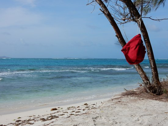 Petit St.Vincent: Beach scene