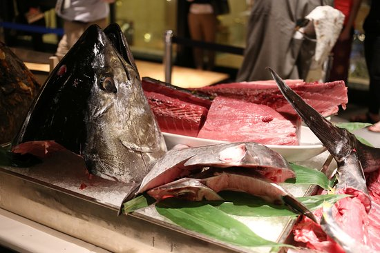 "Hotel Metropolitan Tokyo Ikebukuro: ""Tuna Cutting Show"" at Cross Dine! ONLY ONCE A MONTH!"