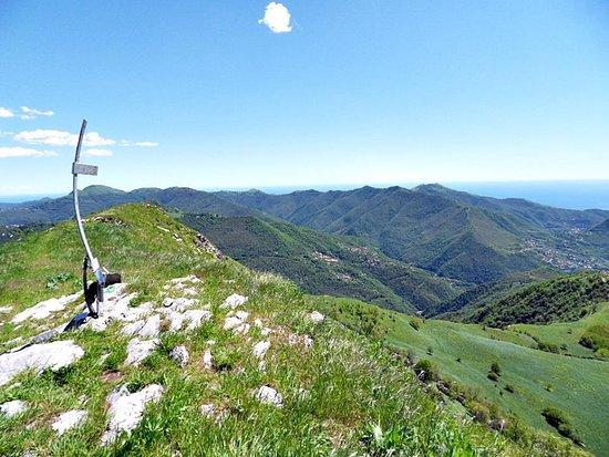 Italian Riviera, Italien: Alpesisa