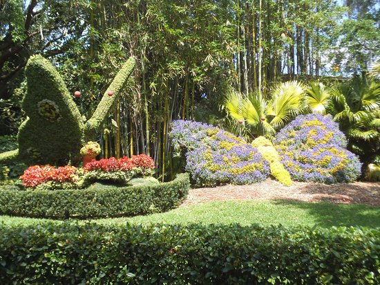 Beautiful sculptured animals - Picture of Busch Gardens, Tampa ...