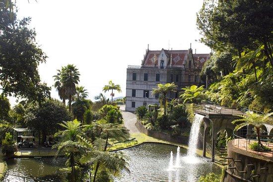 Madeira Diving Center: Funchal Botanischer Garten