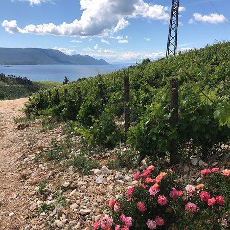 Klek, Croatia: photo9.jpg