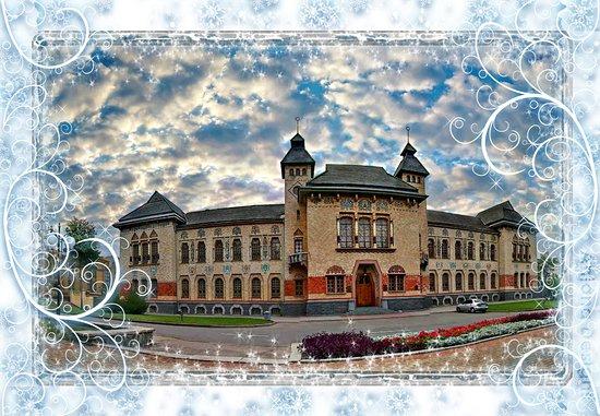 Individual and Group Excursions in Poltava and Poltava Region: Краеведческий музей (Дом полтавского Губернского  Земства )