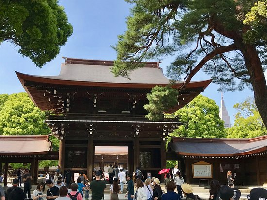Private and personalized experience: see Tokyo with a local: Meiji Jingu