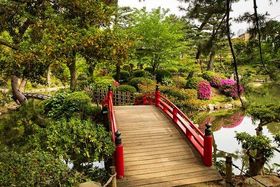Shukkei-en Garden: Wonderful Serene Space
