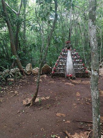 Zdjęcie Chichen itza Cenote Maya full-day tour