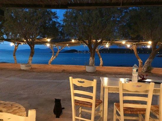 Diakofti, กรีซ: Seaside