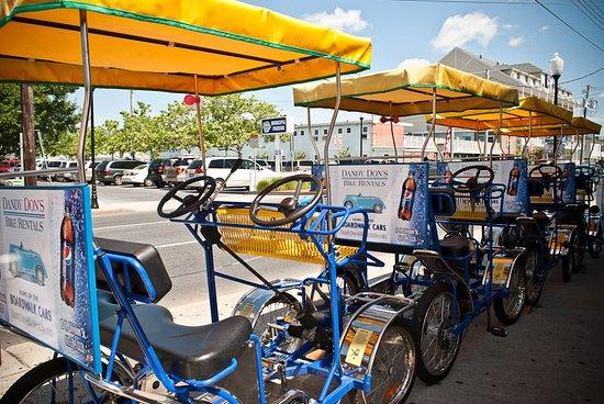 Dandy Don's Bike Rentals