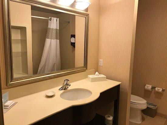 Hampton Inn & Suites Edmonton International Airport: Standard Room on 4th floor: spacious bathroom