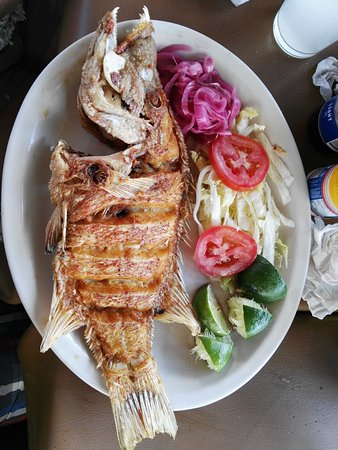 Sisal, Mexico: delicioso!!