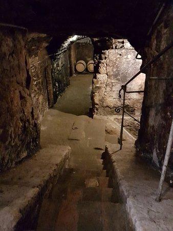 Civitella d'Agliano, إيطاليا: La Cantina
