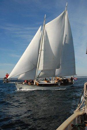 Coupeville, WA: Schooner Suva under full sail