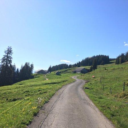 Flums, Switzerland: photo4.jpg