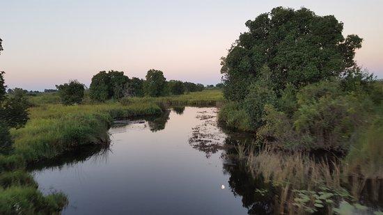 Kwando Concession NG14, Μποτσουάνα: Okavango Delta