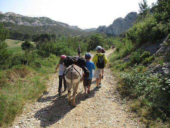 Graveson, Francja: Parc Naturel Régional des Alpilles à Mouriès