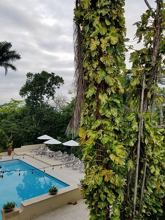 San Ignacio Resort Hotel: View from breakfast