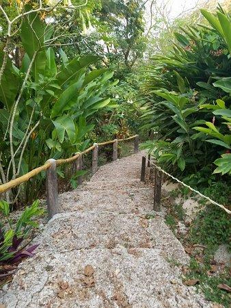 San Ignacio Resort Hotel: Resort grounds