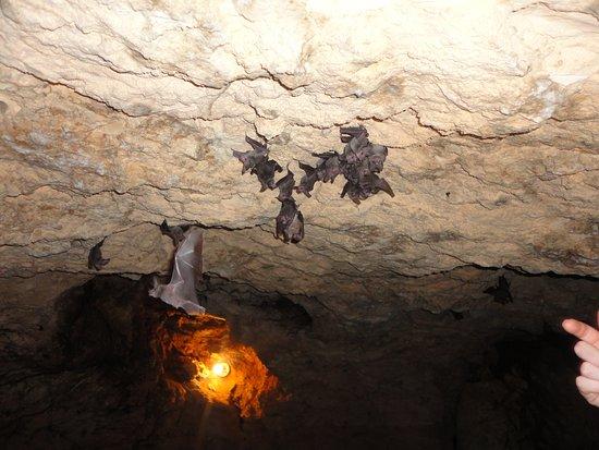 Mojito: club cave