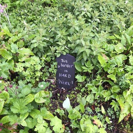 Applecross Walled Garden Φωτογραφία
