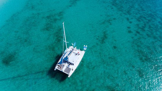 Island Cat Charters & Excursions