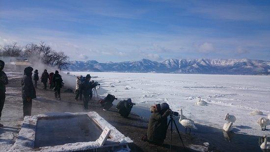 Hokkaido Sightseeing Guide Taxi: Lake Kussharo in winter