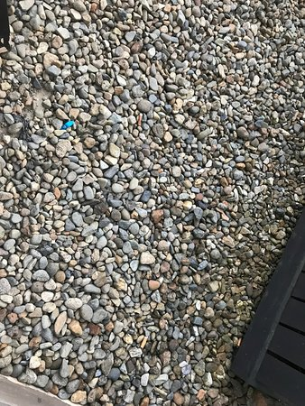 Lami, Fiyi: Cigarette butts were in the ground outside our room