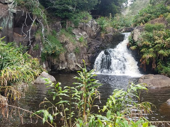Waimea Canyon State Park: Waterfall at Bottom of Canyon Trail