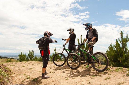 Beginner Downhill Mountain Biking...