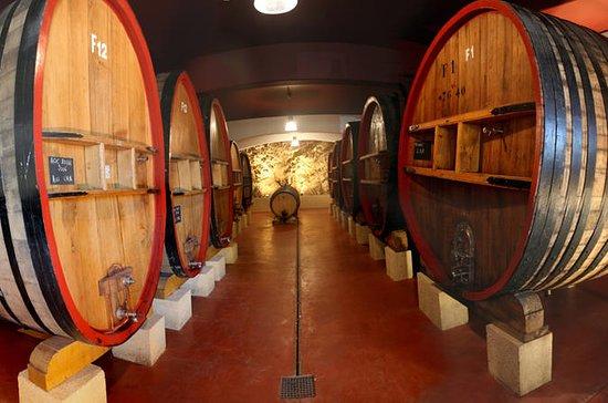 Lille gruppe vin tour: AOP Cassis og...