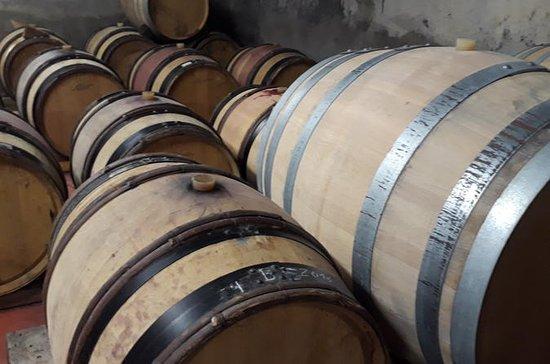 Tour del vino a Coteaux d'Aix in