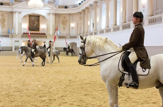 Spanish Riding School: Morning Exercise Entrance Ticket in Vienna