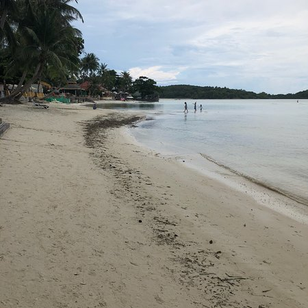 Gorgeous resort with dirty beach