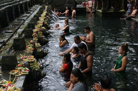 Ubud in One Day Sightseeing Tour...