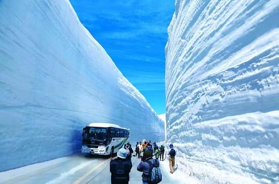 1-Day from Nagano: Snow Wall of...