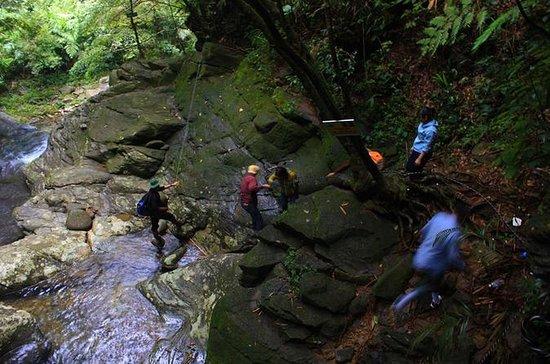 Bach Ma Nationalpark Trekking 2D1N...