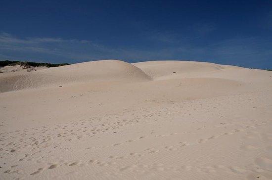 Desert Sahara Sand Dunes in Agadir