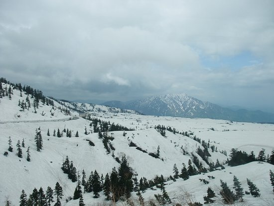 Tateyama Kurobe Alpine Route: View from the bus on a foggy day