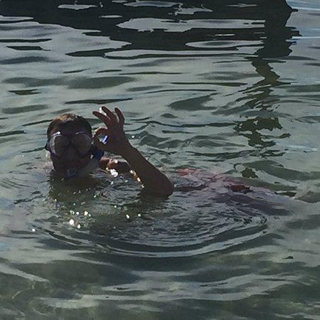 Bilde fra Caveman Snorkeling Tours